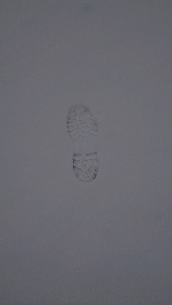 footprint in snow - Cercedilla