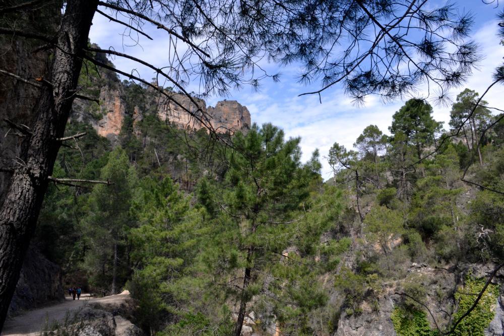 Canyon Cazorla