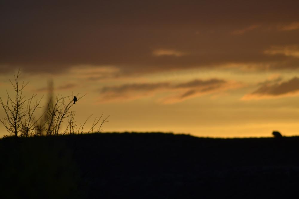 Sunset Riaza